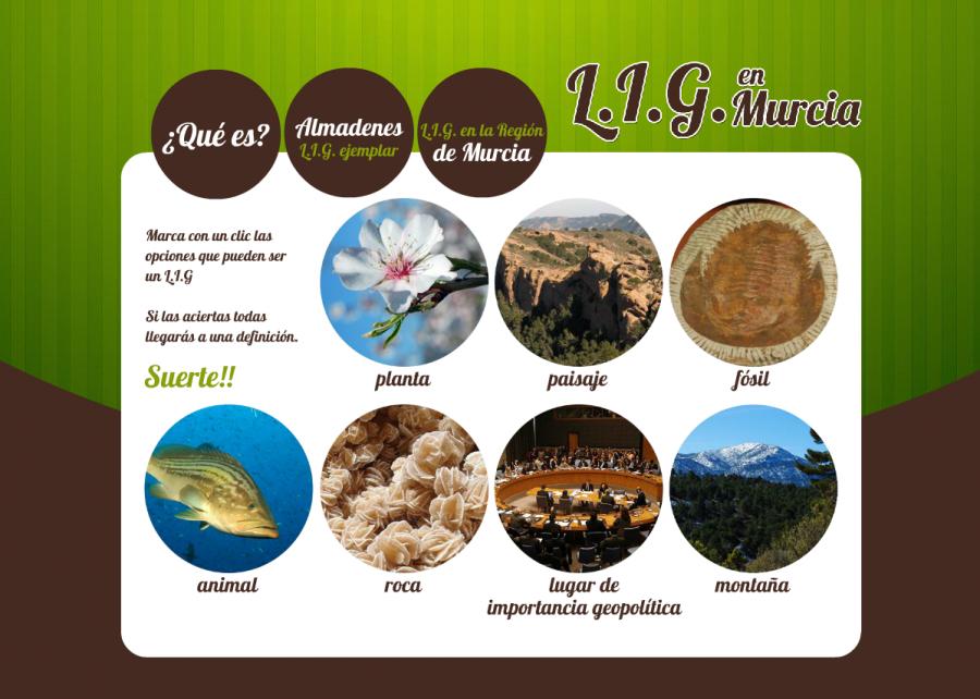 L.I.G. en Murcia